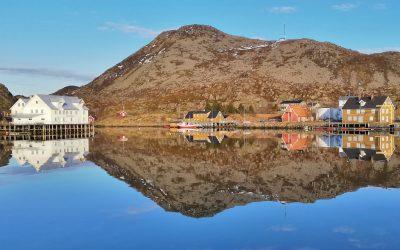 Skrova harbour reflection